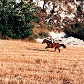 Equitazione e trekking in agriturismo